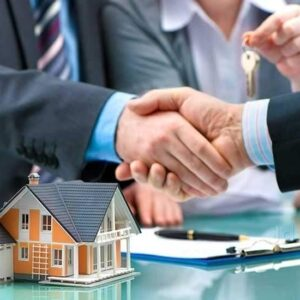 Real Estate Development Consulting David Podrog